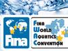 Вторая конвенция Международной федерации водных видов спорта (FINA).