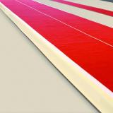 Дорожка акробатическая с регулировкой упругости - 6х2 м