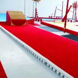 Дорожка акробатическая с рулонной ковровой дорожкой  - 14х2 м