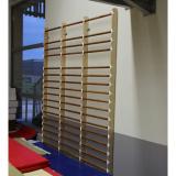 Стенка гимнастическая (трехсекционная)