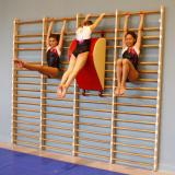 Стенка гимнастическая (четрехсекционная)