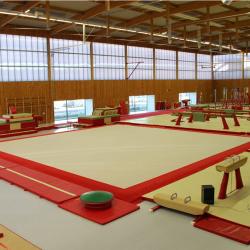 Ковровое покрытие 14 х 14 м для соревнований и тренировок по спортивной гимнастике